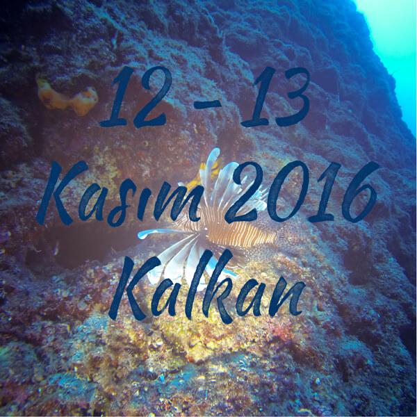 Kasim2016Kalkan