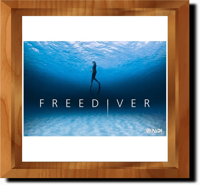 PADI Freediver Touch (in multiple languages)
